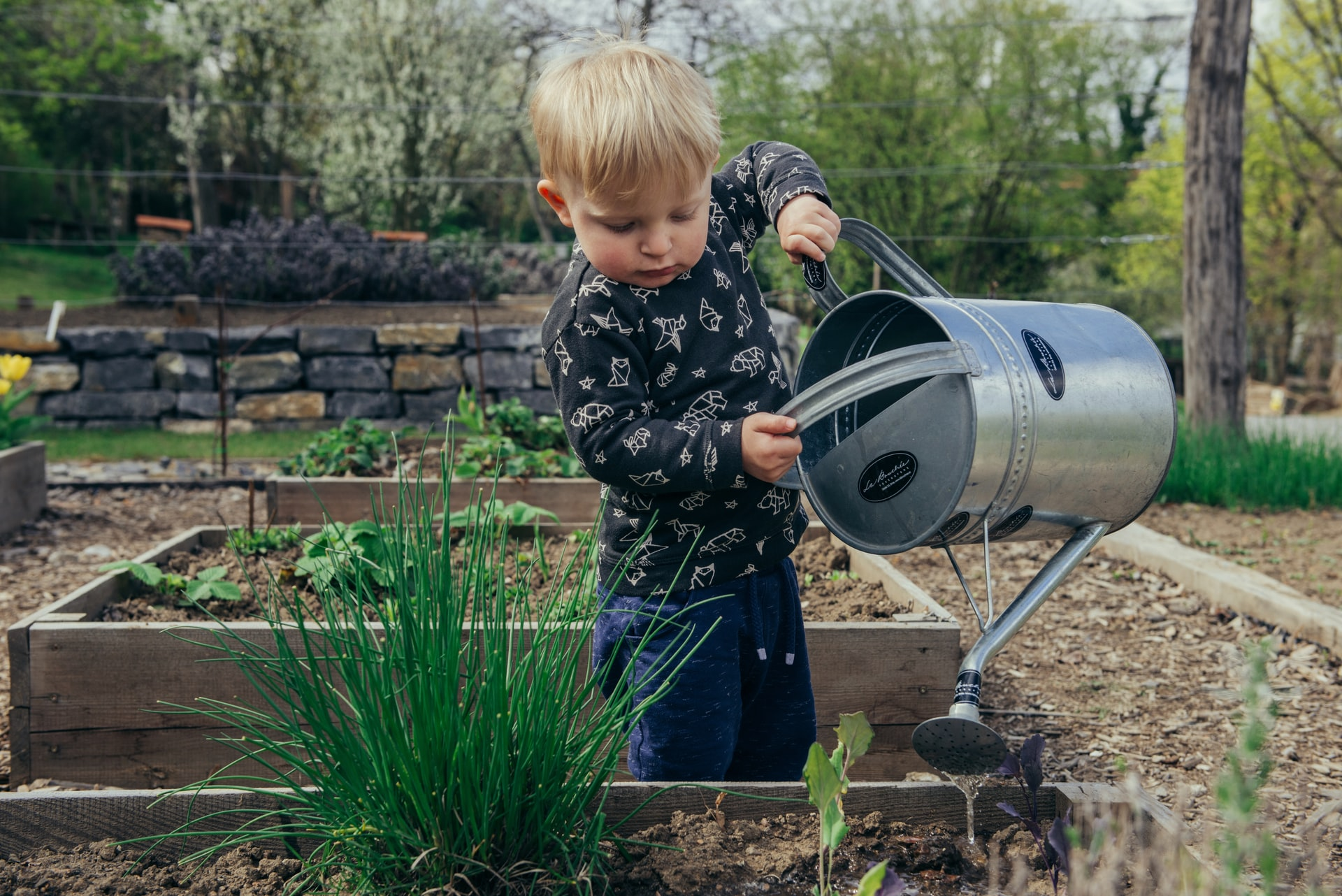 Playsafe playground chip from Composting New Zealand